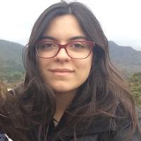 Sara Raquel Marrafa : PhD student
